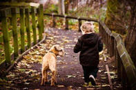 Image of a Dog and Child Hiking