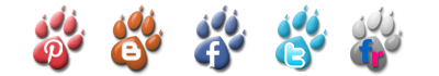 Our Social Networks The Paws Of Peace